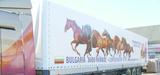 Digital printed truck tarpaulines