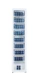 Schmaler Retro-Kühlschrank mit Glastür - GCGD175
