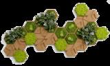 Kork-Hexagon Set, 26er Pack