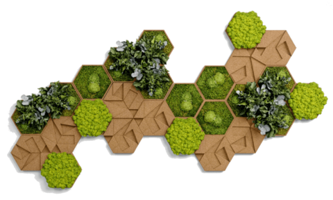 Cork hexagon set, pack of 26