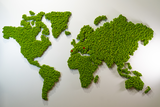 World map made of reindeer moss, self-adhesive