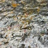 Steinfurnier Glimmerschiefer