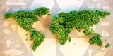 web Nachhaltigkeit